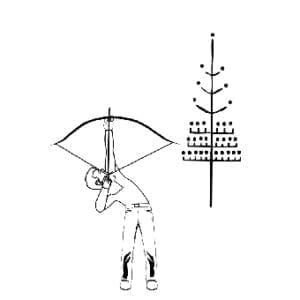archer FG1